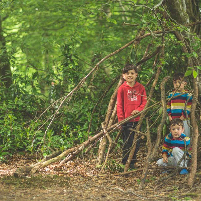 Family activities at Forest Glade