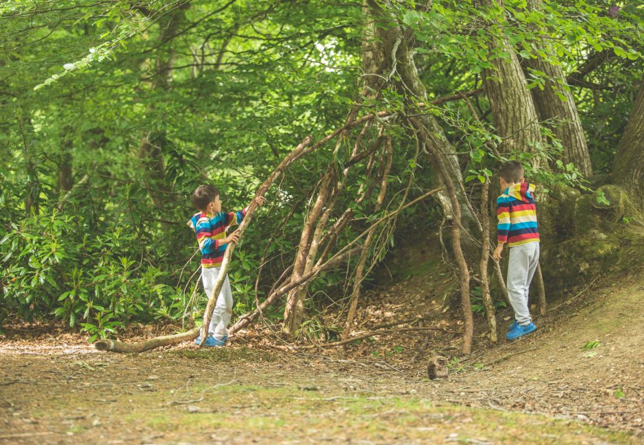 family friendly campsite Activities Den Building at Forest Glade
