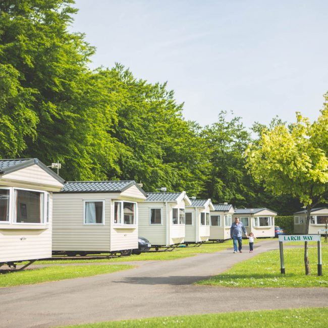 holiday caravans devon larch way