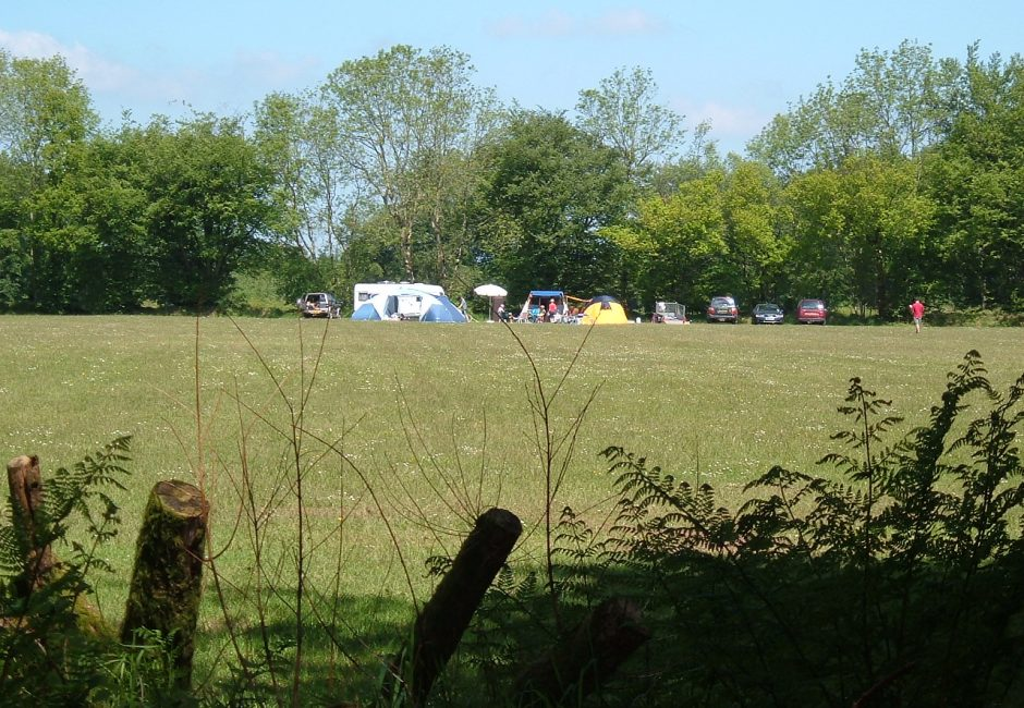 Camping Five Acre field at Forest Glade