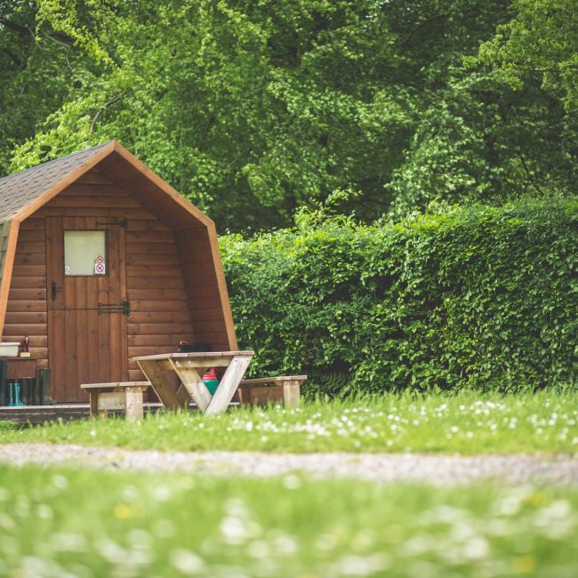 Camping Pod Forest Glade - Outside