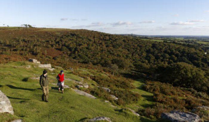 Things to do - Cadover Bridge, Upper Plym Valley, Dartmoor