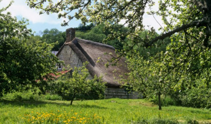 Things to do - The Old Bakery Branscombe