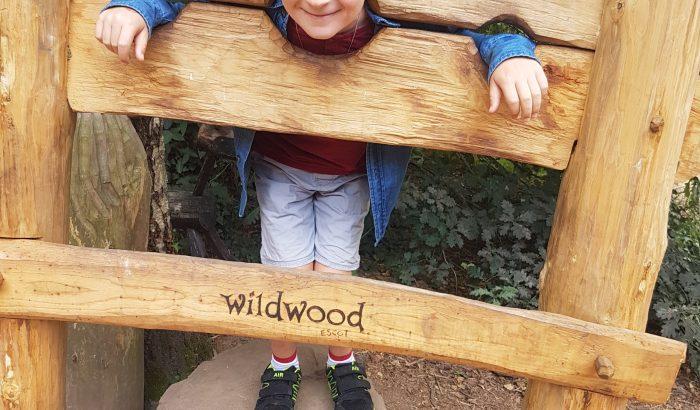 Wildwood Escot - Things to do
