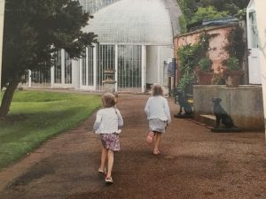 Bicton Palm House