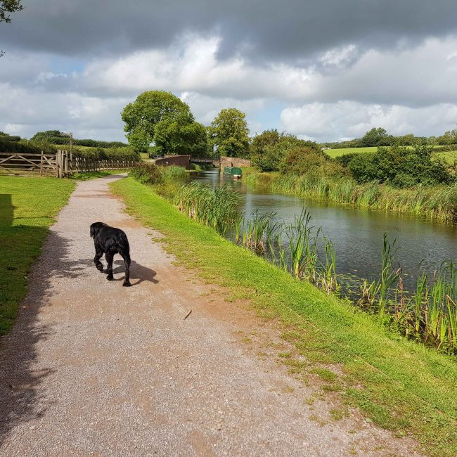 Accessible Towpath / Maria Thorne
