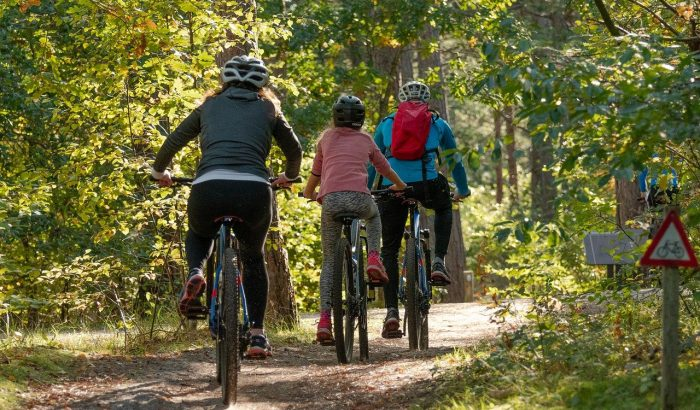 family cycling through forest