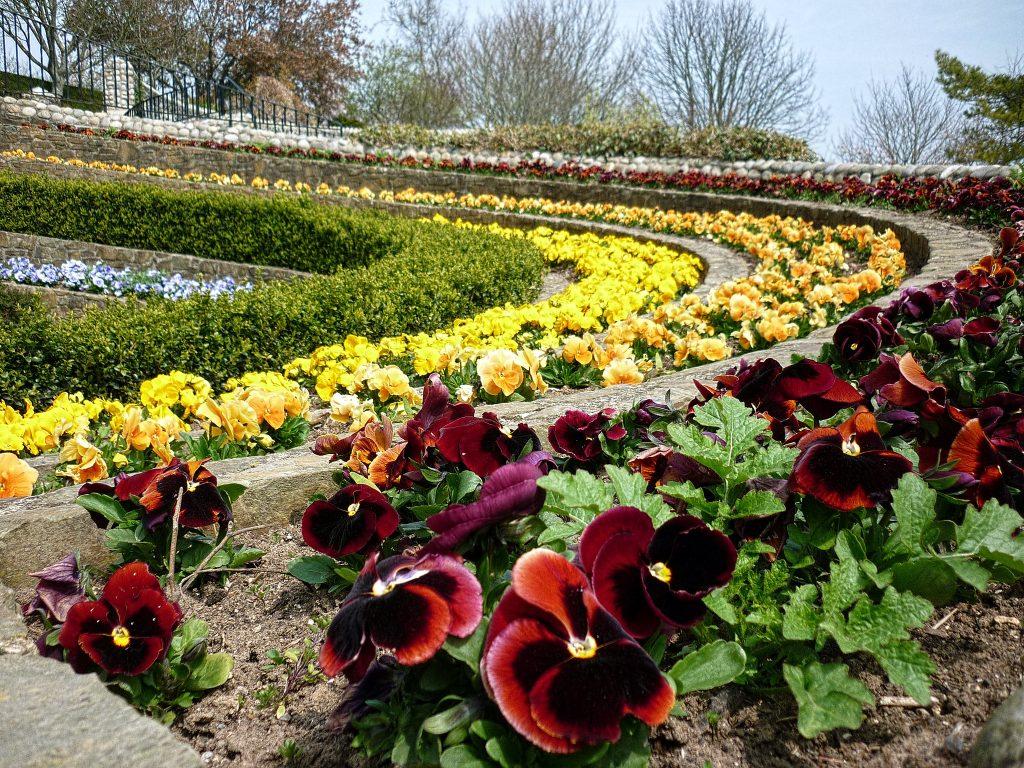 pecorama gardens